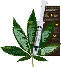 25.09.2014. BLIC.RS: Ispovest lekara koji je pio ulje od kanabisa: Imao sam rak, u život me vratila marihuana